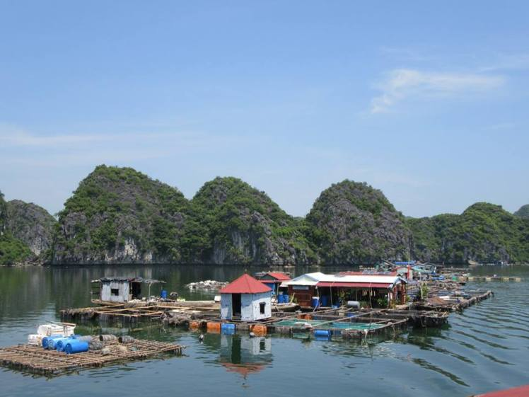 floating-houses-2